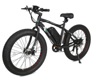 ECOTRIC Fat Tire Electric Bike, Best Electric Bike under 1000