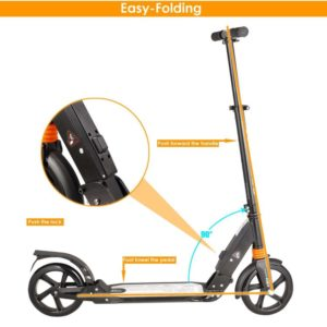 Kids Adult Scooter