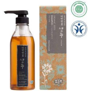Whamisa Organic Seeds Mild Acidic Hair Shampoo for Oily Hair with Scalp –Korean Shampoo