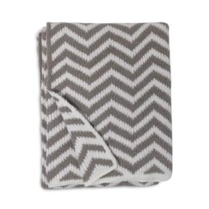 Living Textiles Chevron Chenille Soft Best Baby Blanket