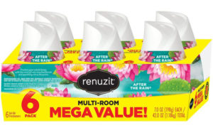 Renuzit Adjustable Best Air Freshener Gel, After The Rain