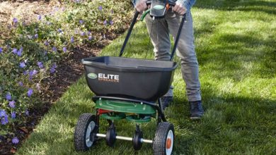Photo of The 10 Best Fertilizer Spreader Reviews in 2020