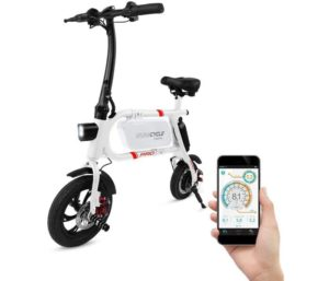 SwagCycle Folding Electric Bike
