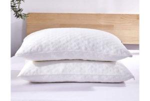 Dreaming Wapiti Best Bamboo Pillows Adjustable Loft-Stomach Side Back Sleeper