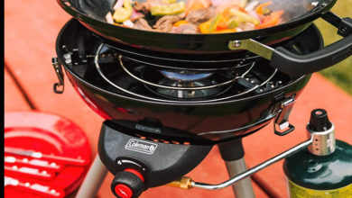 Photo of The 7 Best Small Gas Grill Reviews in 2020